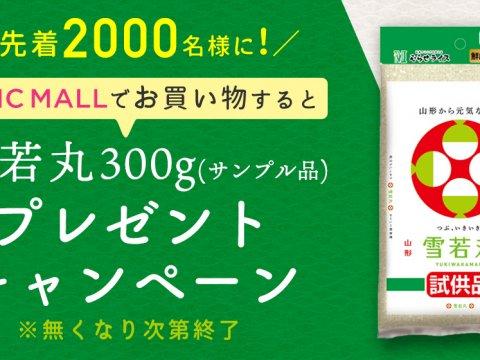 【限定2000個】『山形の元気なお米!雪若丸300g』プレゼントキャンペーン♪
