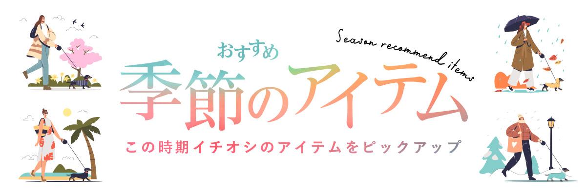 【今はコレ!】季節のおすすめアイテム